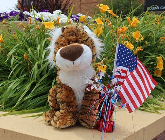 Image of a stuffed tiger with American flag, taken in Jackson Plaza at DWU.